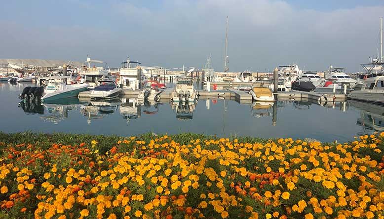 dubai yacht rental prices